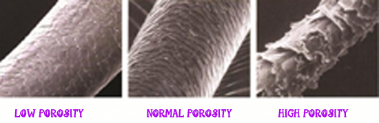 carouselporosity.png